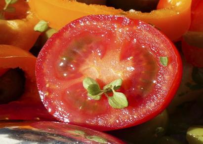常食西红柿好处多多 番茄炖牛腩更营养哦