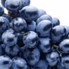 生活中这些水果还有这些作用 葡萄可帮你淡化痘印