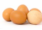 哪种鸡蛋金沙国际娱乐网址价值高 如何挑选鸡蛋好呢