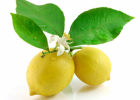 柠檬应如何保存 柠檬保鲜期多长时间