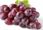 葡萄和芒果一起食用会有哪些反应