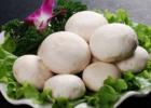 口蘑不能和什么一起吃 口蘑的搭配技巧