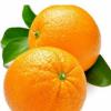 每天吃多少柑橘才最健康呢 柑橘家族成员各有所长