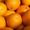 女性经常吃橙子有什么功效与好处
