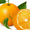 柑橘都包括哪些 柑橘家族成员的各种金沙国际娱乐场官网