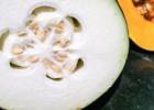 女人体内湿气重吃什么 祛湿食谱的常见做法