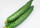 如何挑选黄瓜 哪些黄瓜是激素黄瓜