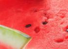 西瓜减肥的原理 夏天吃西瓜能减肥吗