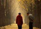 老人经常旅游可以散心