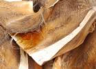 棕榈皮的功效与作用