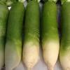 青萝卜怎么腌制好吃 青萝卜的营养价值