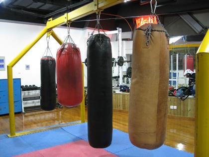 练拳击的沙袋多少钱_拳击健身之拳击沙袋的选购技巧 - 普瑞健康
