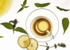 丝瓜叶泡茶喝 老人喝丝瓜叶茶治疗头晕头痛