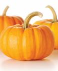秋季吃这三种瓜养阴