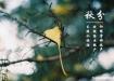 【图】秋分时节应注意八