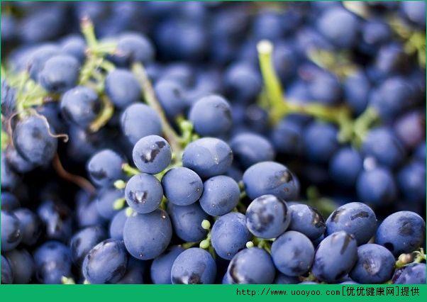 养肝的水果有哪些?九种水果让你的肝脏更加健康(4)