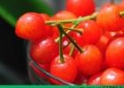 养肝的水果有哪些?九种水果让你的肝脏更加健康[多图]