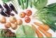 多吃应季食物 适合冬季的5种蔬菜[多图]