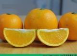 橙子和核桃能一起吃吗?橙子能和核桃一起吃吗?[多图]
