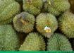 肺炎能吃榴莲吗?肺炎吃榴莲有什么好处?[多图]