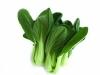 每家餐桌的常吃的绿叶防癌蔬菜