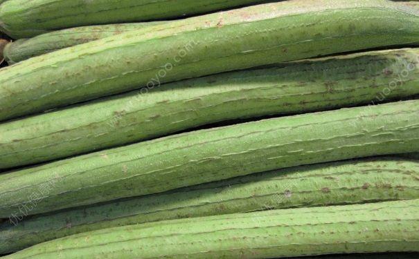 吃丝瓜有什么好处?丝瓜的金沙国际娱乐场官网与作用(4)
