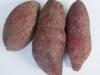 紫薯能治便秘吗?吃紫薯可以治便秘吗?[多图]