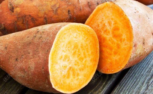 红薯的热量是多少?红薯的热量和减肥金沙国际娱乐场官网(1)