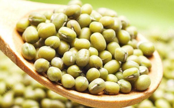 绿豆的热量是多少?绿豆的热量高吗?(2)