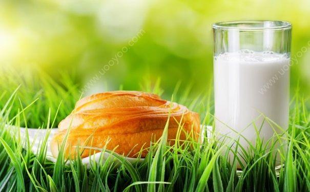 牛奶的热量是多少?一杯牛奶的热量高吗?(3)