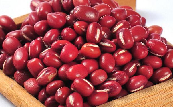 红豆的热量是多少?红豆的热量高吗?(3)